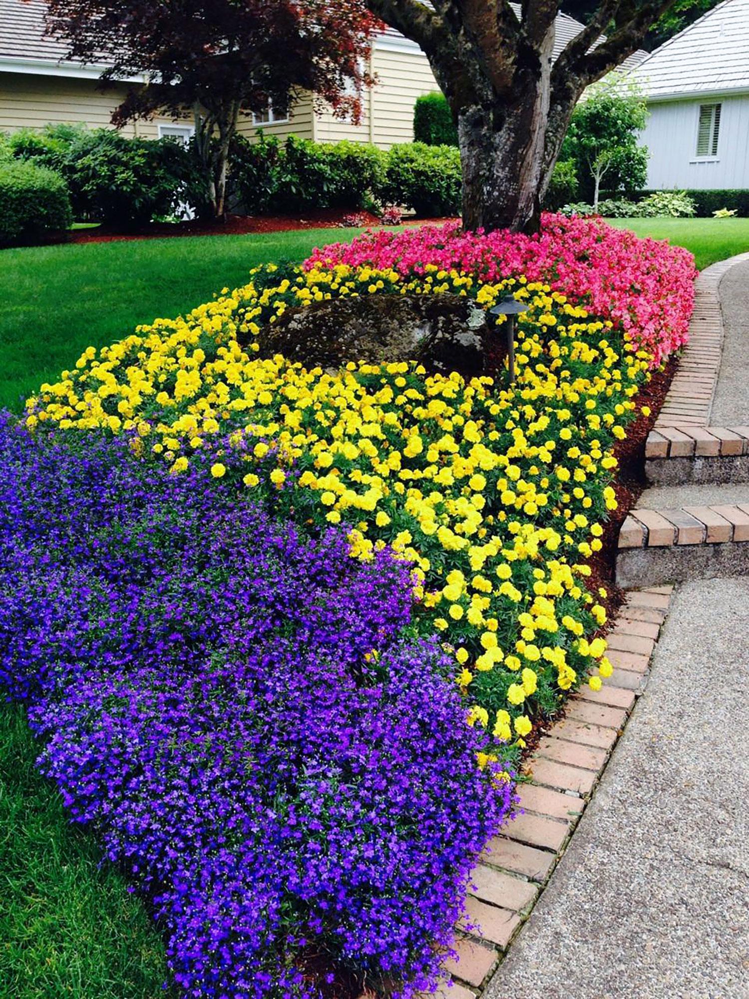 Summer Landscaping landscaping summer annuals in eugene, or   living concepts landscape
