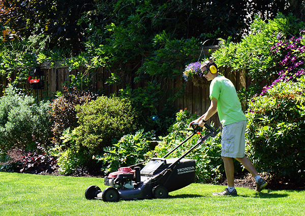 Mowing_1resized