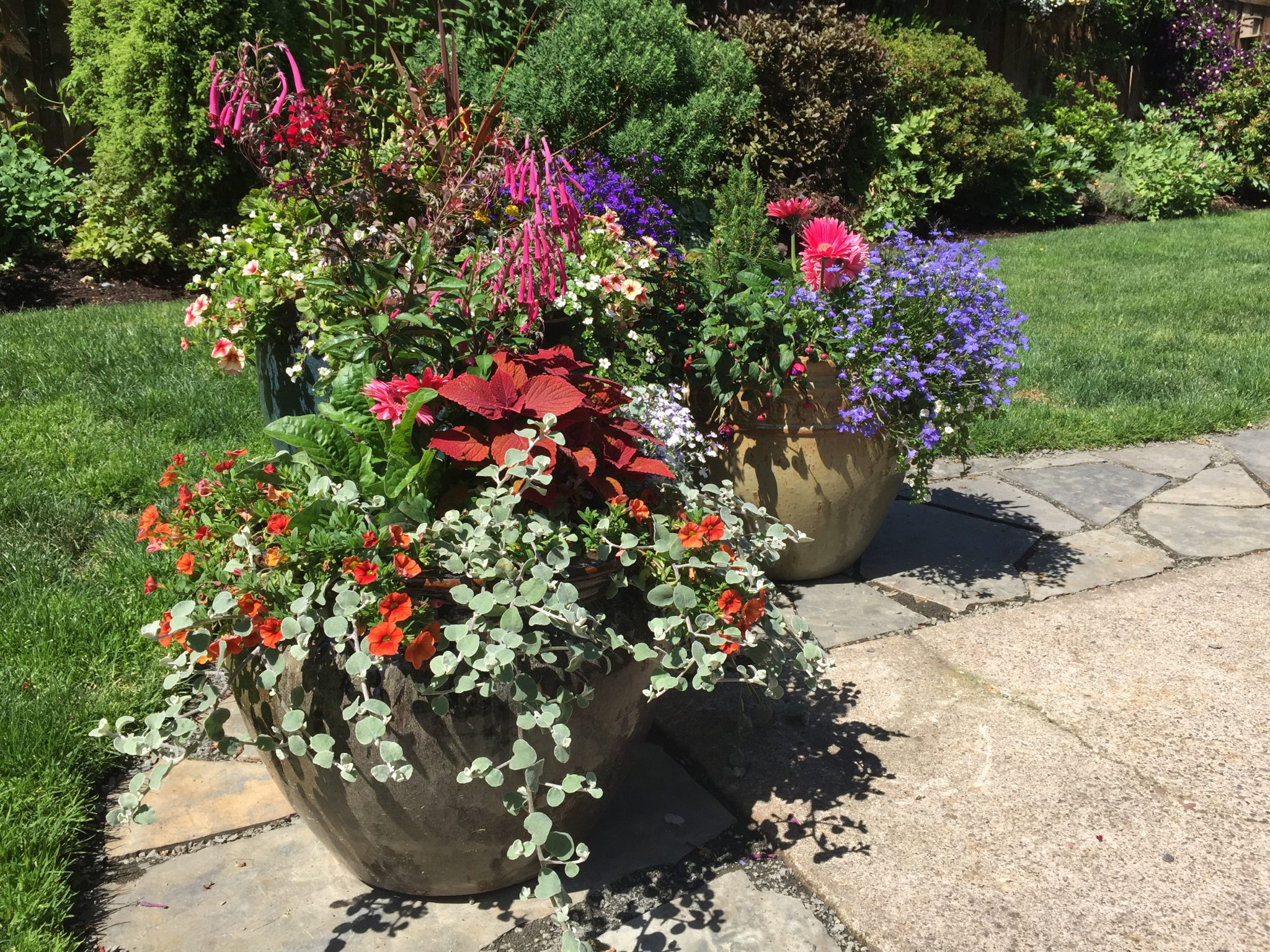 containers can be e quite heavy when filled with soil The roots of your plants will only utilize Container 3